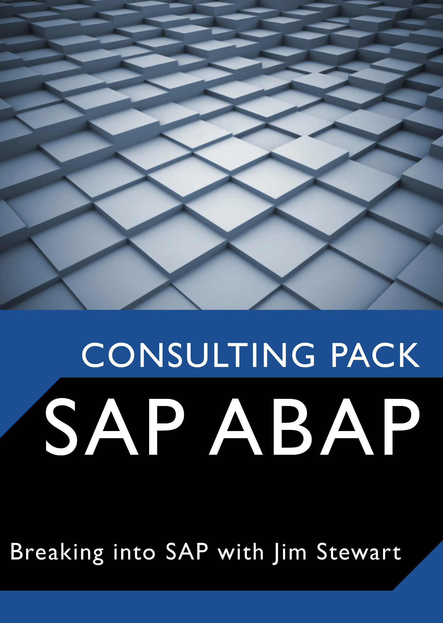 Sap Abap Consulting Pack Your Fastest Way To Lucrative
